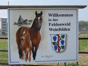 Abb.: Eingangsbereich der Fohlenweid Weinfelden